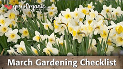 March Gardening Checklist: 9 Tips to Prepare Your Organic Garden for a Successful Growing Season