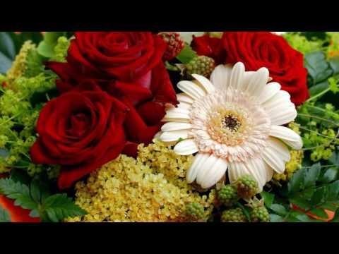 Картинки на рабочий стол (цветы)