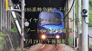 185系特急踊り子号 ザ・ロイヤル・エクスプレス リゾート21キンメ電車 伊豆急行線 午後撮影