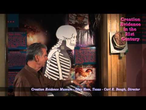Failed Evolutionary Pre-Human Candidates: Episode 10 - Cro-Magnon Man