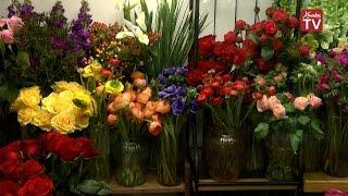 видео Какие цветы дарить зимой