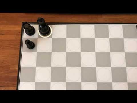 HIARCS Chess Forums :: View topic - DGT Centaur first impressions
