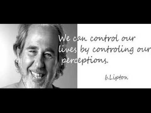 Bruce Lipton.... The Biology of Belief (audio only )