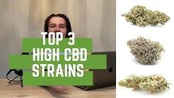 Best 3 high CBD weed strains