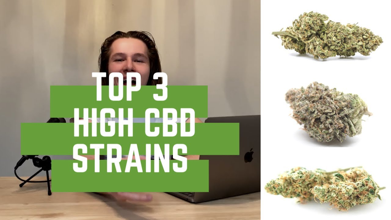 Best 3 high CBD weed strains