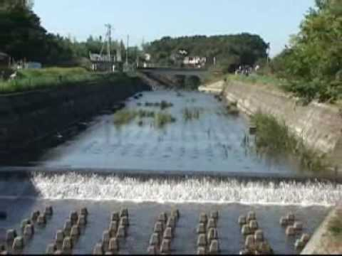Japan's Pollution Experience: Bringing Water Back to Life Pa