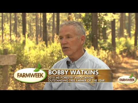 Bobby Watkins 2015 MS Tree Farmer of the Year, Farmweek, October 23, 2015