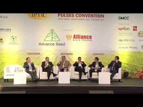 Panel Discussion - Peas - Yellow & Dun