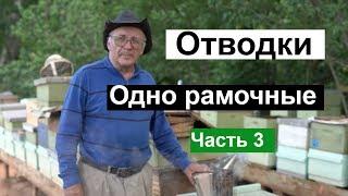 Пасека 121 Одно рамочные ОТВОДКИ МаткиМаточникиМёд и Пчелы Пчеловодство для начинающих