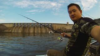 Stripers smashing Cordell Pencil Poppers!!!  - OOW Outdoors