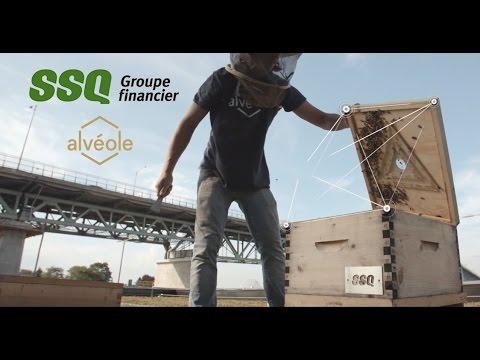 SSQ Groupe financier & Alvéole - Événement