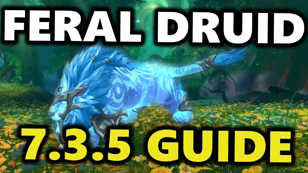 Feral Druid Guide Patch 7 3 5 World Of Warcraft Class Guide Youtube