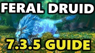 FERAL DRUID GUIDE PATCH 7.3.5 | WORLD OF WARCRAFT CLASS GUIDE