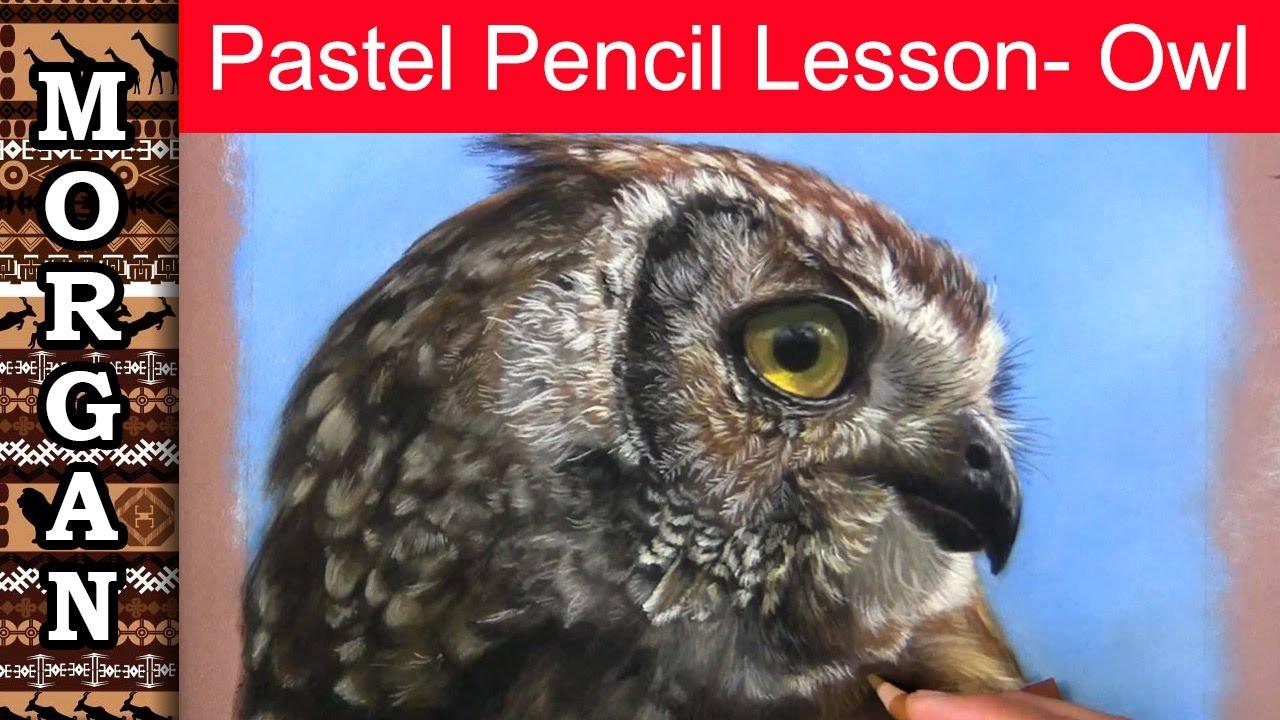pastel pencils drawing lesson owl wildlife art l jason morgan
