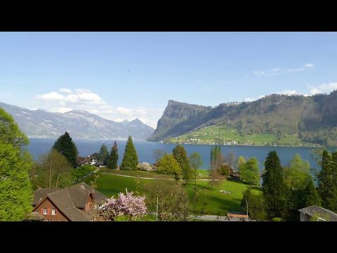 IMI Switzerland Campus View