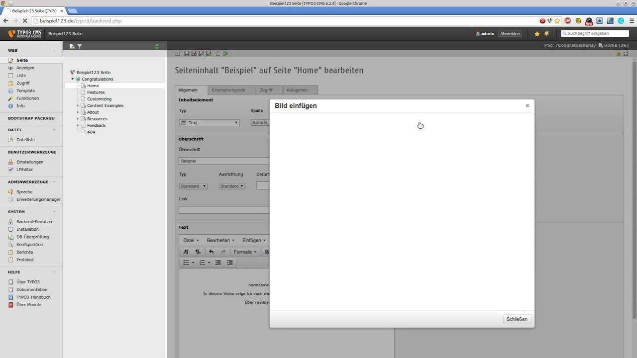 Vorstellung: TinyMCE als TYPO3 RTE