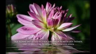 Von guten Maechten treu und still umgeben & Amen Part