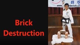 Instructor Liz Brick Destruction