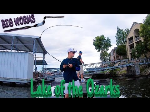 Catching Bass On Big Worms - Lake Of The Ozarks