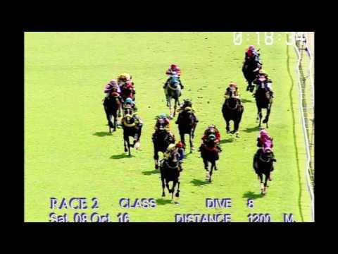 ม้าแข่งสนามฝรั่ง วันเสาร์ที่ 8 ตุลาคม 59 เที่ยว 2 ม้าชั้น 8