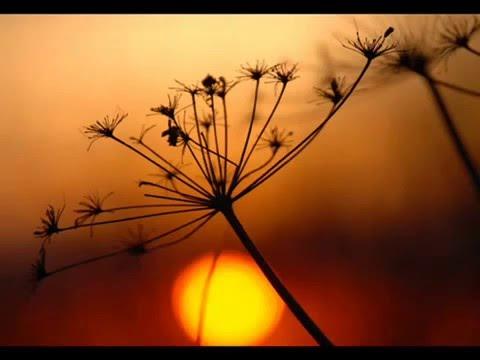 Gayatri Mantra :   By Deva Premal