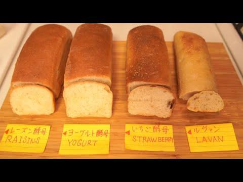 【比較・検証】4種の天然酵母でパンを作って比較してみた(I made bread with four different natural yeasts and compared them)