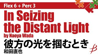 [Flex6+Perc3] 彼方の光を掴むとき/和田直也/In Seizing the Distant Light/by Naoya Wada thumbnail