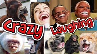TRY NOT TO LAUGH  || Ultimate Laughs Compilation || Crazy Funny Video