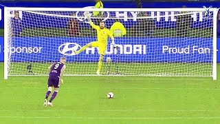 When Goalkeepers Save Penalty Kicks In Unusual Ways