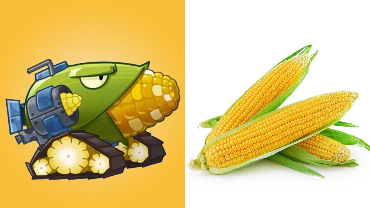 Plants vs zombies 2 todas las plantas de la versi n china for Las raices chinas se cocinan