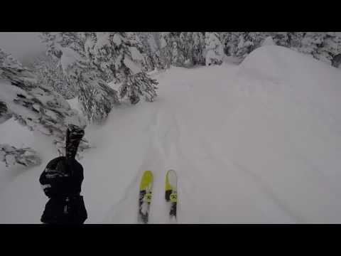 Skiing Whitefish - Back Side Trees