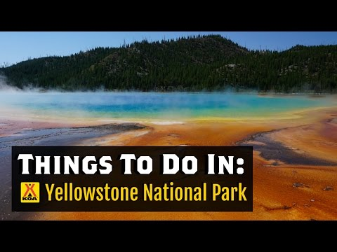 Things To Do in Yellowstone National Park
