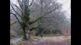 Kabhi Alvida Na (Kabhi Alvida Na Kehna) karaoke by sameer gehani
