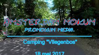 Amsterdam noord. Camping