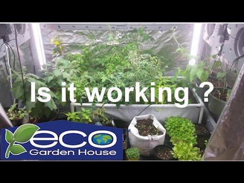Is it really working The Eco Garden House Grow Indoors 247365 The Wisconsin Vegetable Gardener