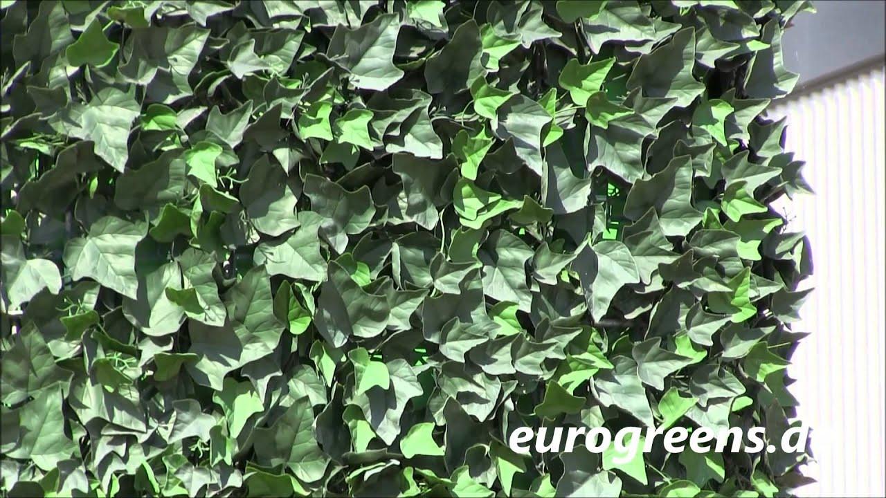 EuroGreens Kunstpflanzen Sternefeu Heckenpaneel