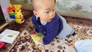 พัฒนาการเด็ก 9 เดือน 20 วัน thumbnail