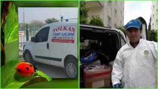 volkan ziraat mühendislik ilaçlama şirketi aydın ev ilaçlama, iş yeri ilaçlama tel: 0544 516 02 78 Video