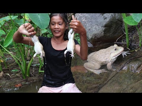 Survival Skills: Catch two Frog for Food in the Forest - Cooking Frogs fry and Eating delicious #60