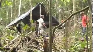 Avião cai na selva amazônica e é localizado cerca de 20 anos depois(REPORTAGEM COMPLETA)