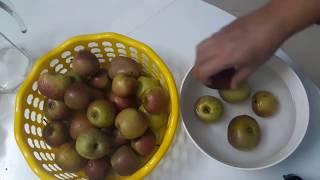 Cách làm giấm táo (táo ngâm) thức uống tốt cho sức khỏe!