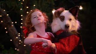 Собака точка ком (Сезон 2 Серия 23)
