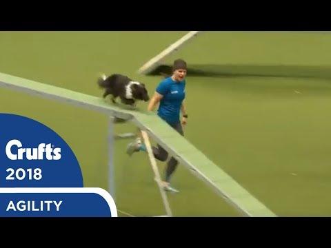 Agility - Crufts Team - Medium Final Part 2   Crufts 2018