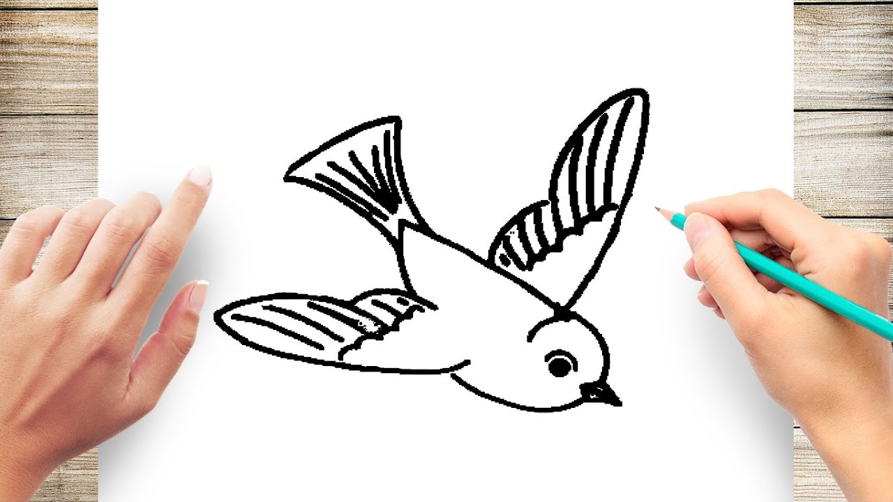 How To Draw A Bird Flying Step By Step For Kids Youtube