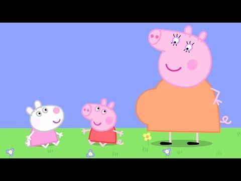 Peppa Pig Français 🍼Des Bébés | Nouveaux Compilation | Dessin Animé