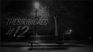 THEBIRIBIBAESERIES#13