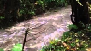 Pontarddulais waterfall