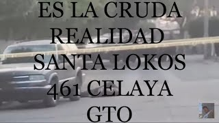 SANTA LOKOS 461 / ES LA CRUDA REALIDAD IT IS THE RAW REALITY CELAYA GTO MEX それは原油の現実です// CELAYA GTO