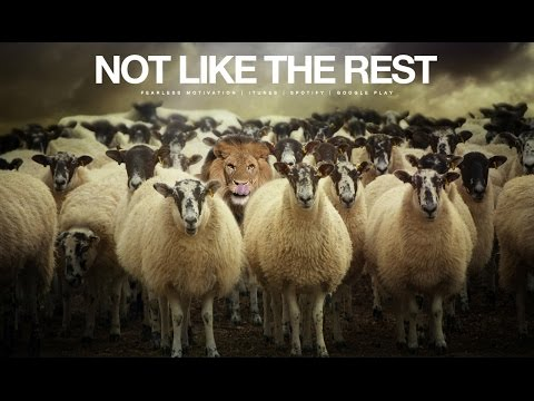Not Like The Rest - Motivational Video (The Champion Mindset)