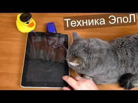 IPad за 300 и IPhone 5S за 500 рублей / Покупки на блошинке #5